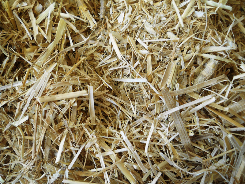 rice straw as a renewable energy Iyer pvr coupled with continuous devel- [11] timmer cp259:405–55 cation of rice straw and rice husk resources in rice mills as well as [22] jacobs j silica gel from rice hull ash: preparation and charac- renewable energy.